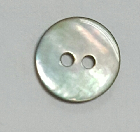 16L Akoya shell button