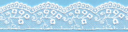 "1"" Emboidery Lace White #"