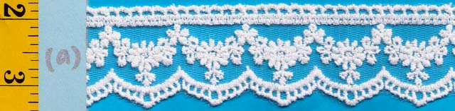 "1 1/2"" Mesh embroidery lace"
